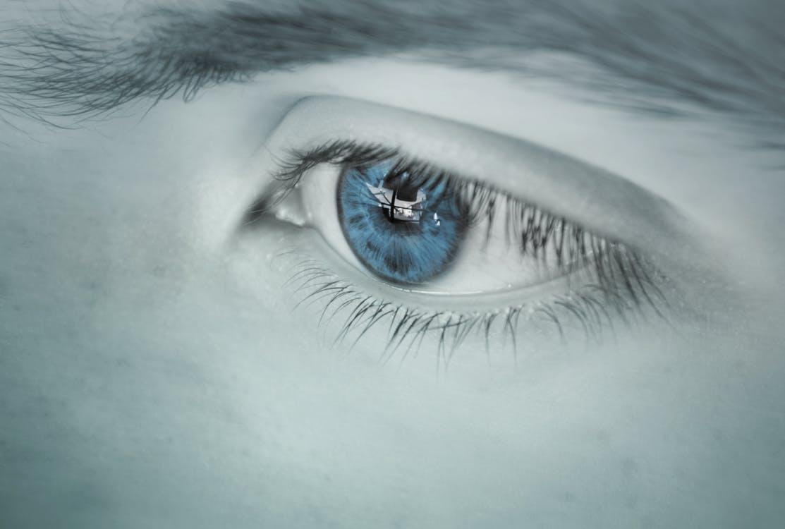 zichtbaarheid website